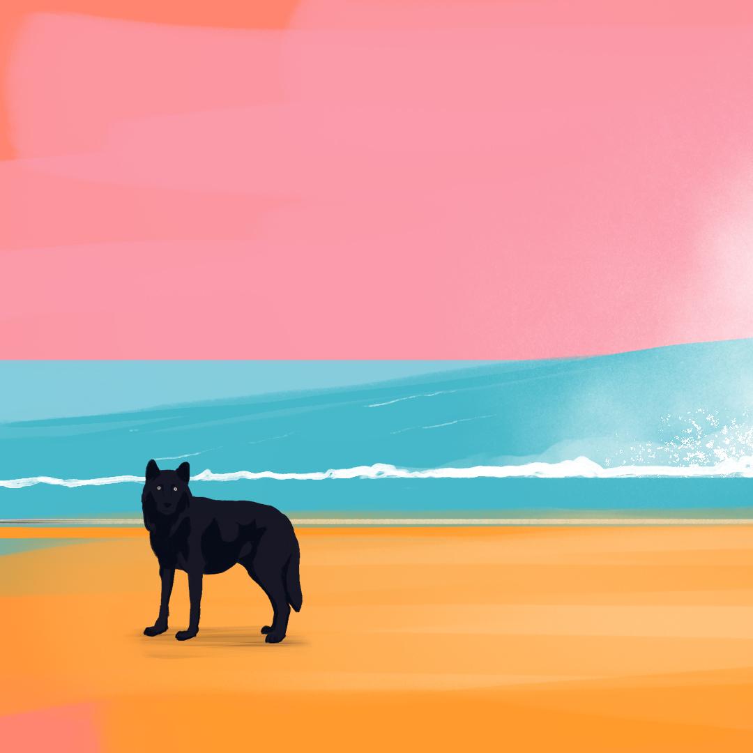 beach_life_01
